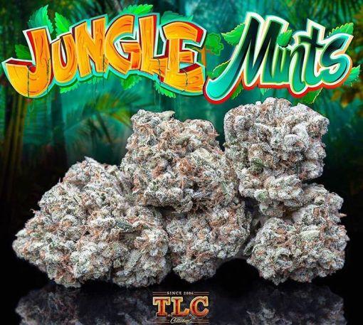 Jungle Mints JUNGLE BOYS MARIJUANNA
